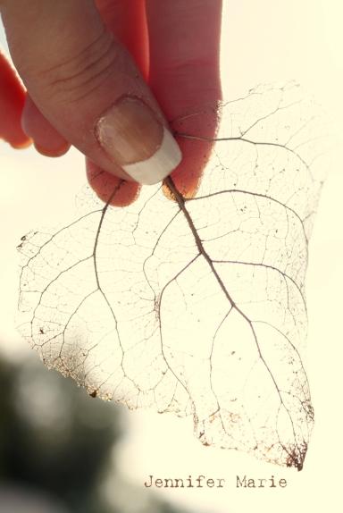 leaf 118