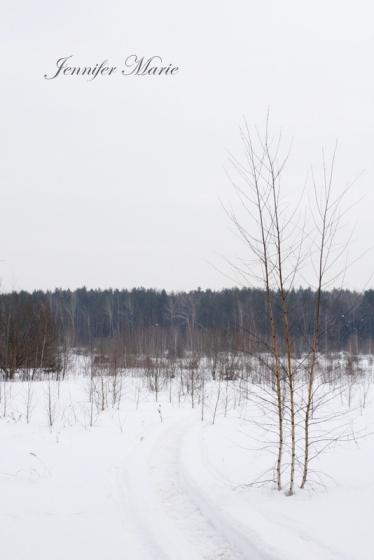 Walk in the woods 055