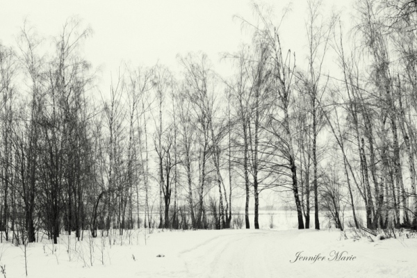 Walk in the woods 056
