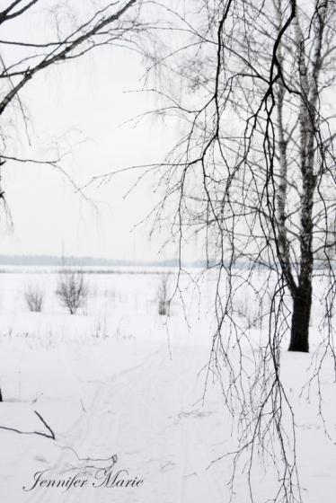 Walk in the woods 061