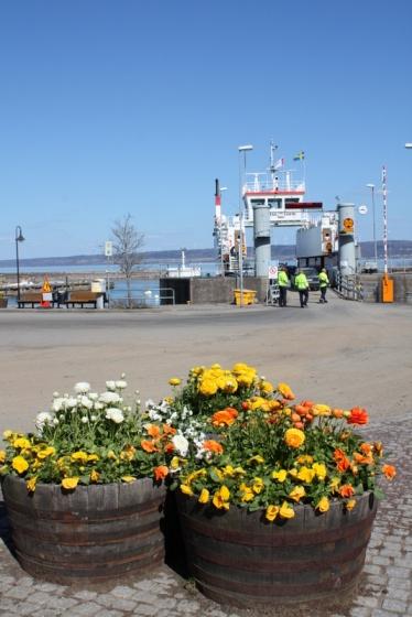 Swedish Island 326