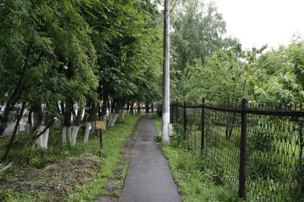 Rusisa in Summer 023